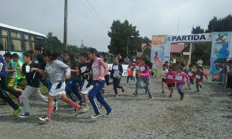 La ostra chilena motiva a escolares de Ancud a hacer deporte y literatura