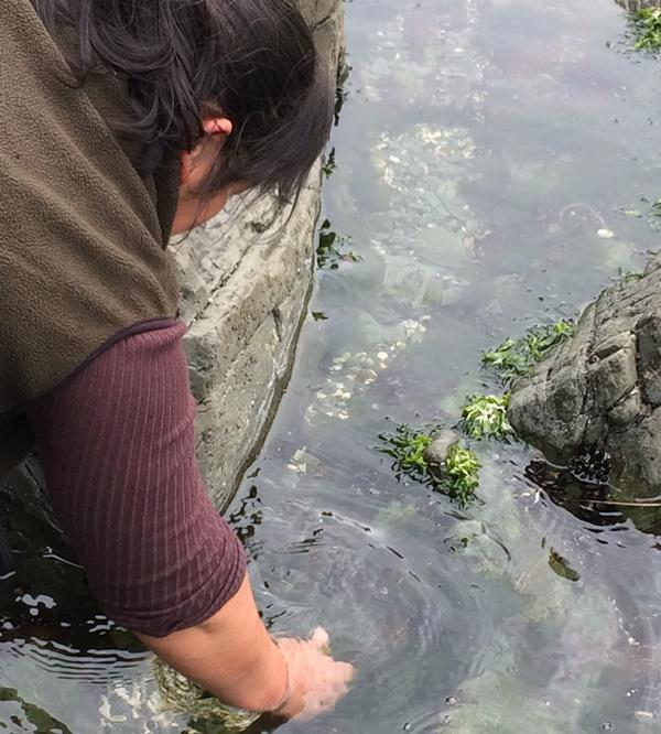"""""""Hemos consolidado nuestra investigación en pro de potenciar las algas para el consumo humano"""""""