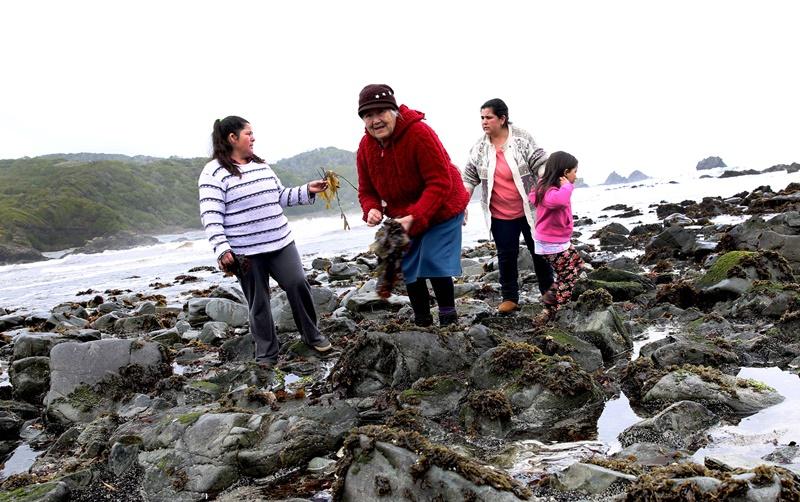 Centro Acuícola y Pesquero CAPIA UST: Investigación multidisciplinaria con impacto en la comunidad