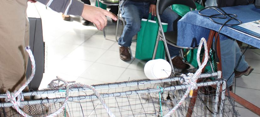 Innovación y Transferencia tecnológica del método de captura del Congrio Dorado para pescadores artesanales de la Región de Los Lagos
